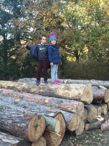 Equilibre sur troncs d'arbres