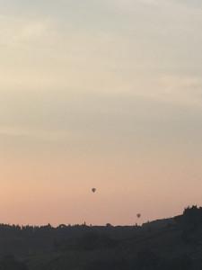 Ballons dans le ciel du petit matin